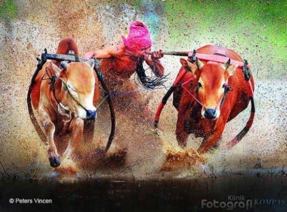 contoh foto asli tanpa digital imaging by peters vincen (http://kfk.kompas.com)